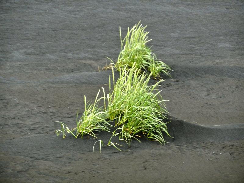 2011-islande-1297